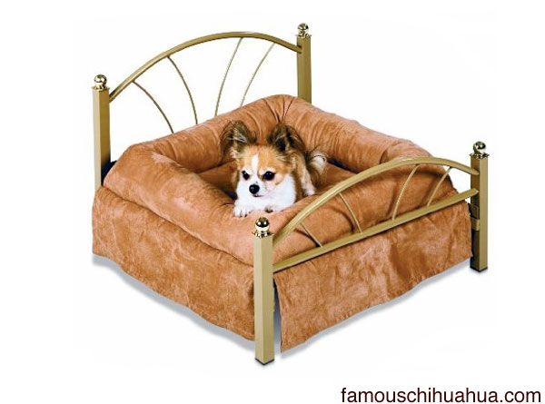 pamper your chihuahua with the petmate luxury pet bed!