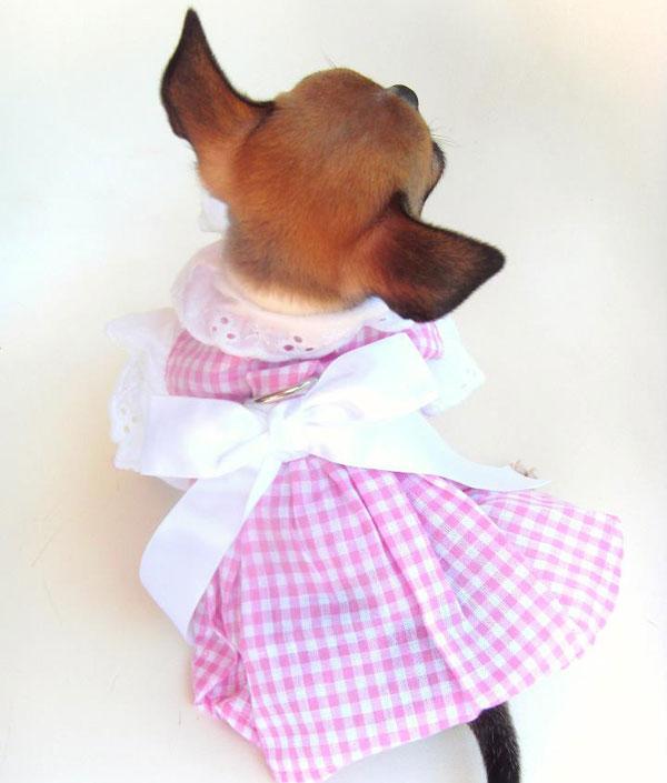 cute dog dresses on sale