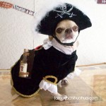 juanita the pirate!