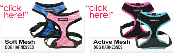 trachea friendly dog harnesses