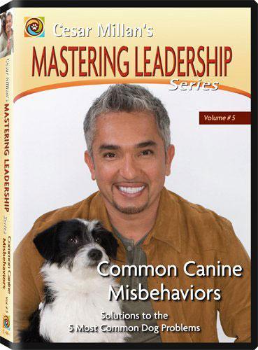 cesarmillan-mastering-ledership