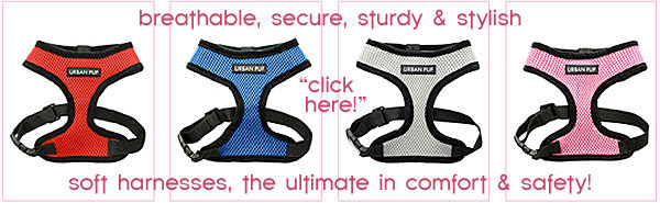 affordable soft harnesses