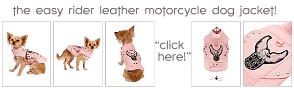 leather motorcycle dog jacket