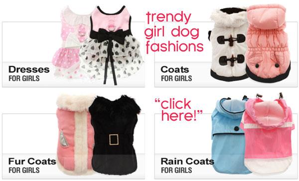 girl dog fashions