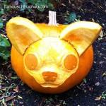 carved chihuahua pumpkin