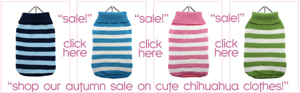 sale on chihuahua clothes!
