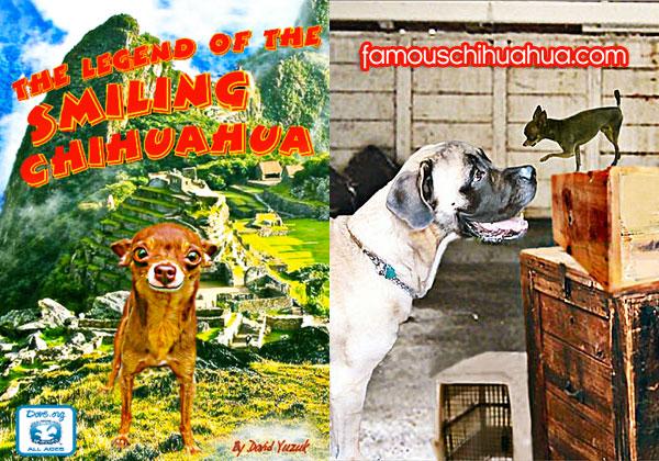 chihuahua story book