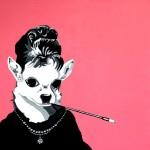 audrey hepburn chihuahua portrait