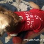 santa's little helper chihuahua shirt