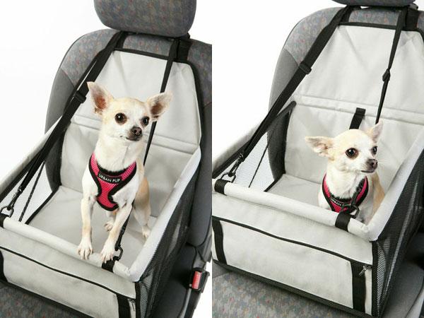 win this dog car cradle!