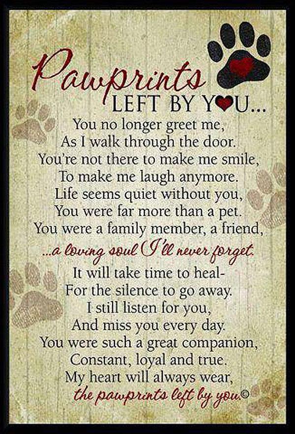 pawprints dog poem
