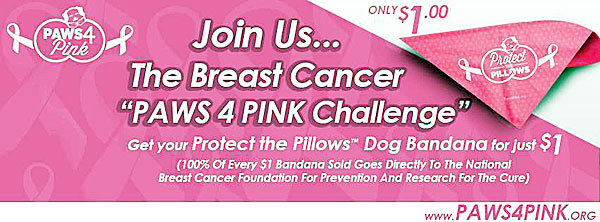 paws 4 pink breast cancer challenge