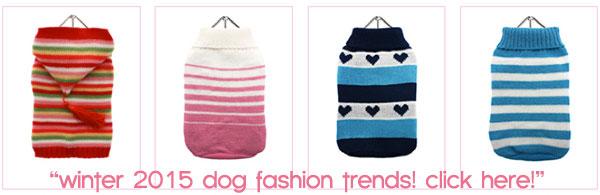 winter 2015 dog fashion