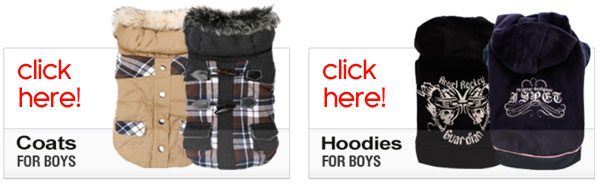 boy dog clothes fashions
