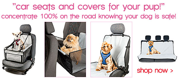 dog travel car seats