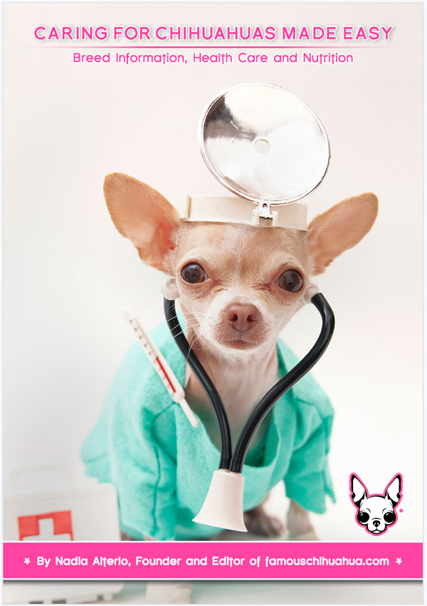 caring for chihuahuas made easy: breed information, health care and nutrition book