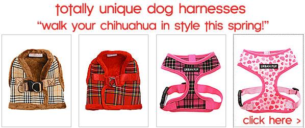 spring dog harnesses