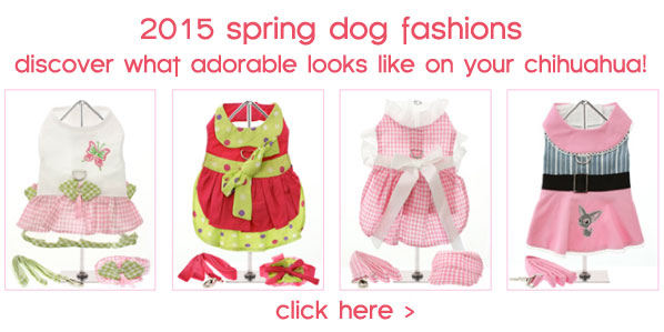 2015 spring dog fashions