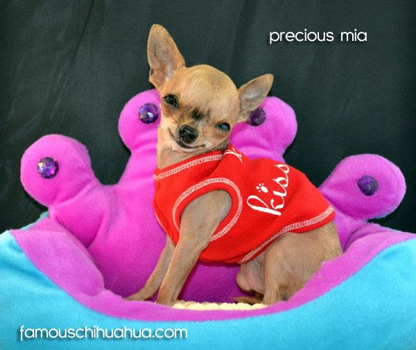 precious-mia