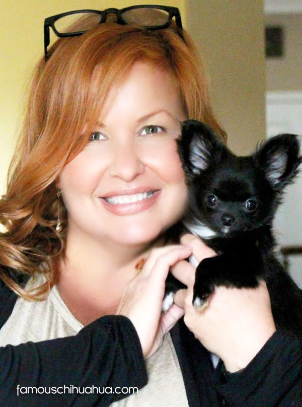 chihuahua and mommy