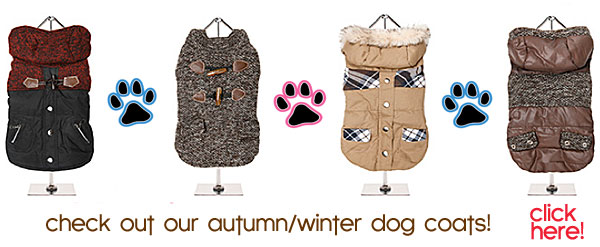 fall and winter dog coats