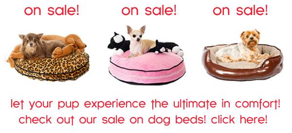 sale on chihuahua dog beds