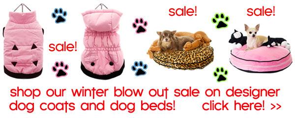 sale on chihuahua dog coats