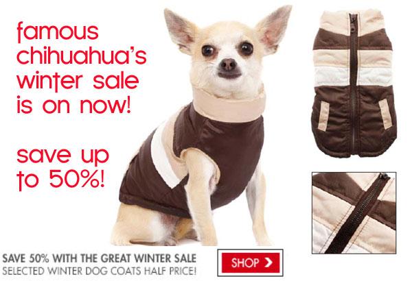 winter sale on chihuahua coats
