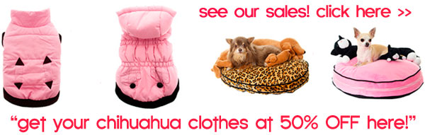 chihauhua clothes sale