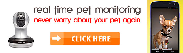 pet monitor