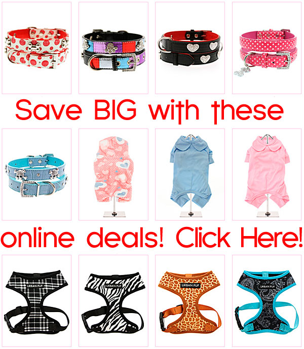 online deals on chihuahua clothes and accessories