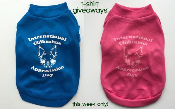 dog shirt give aways