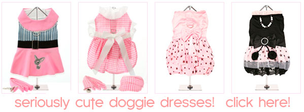 cute dog  dresses for chihuahuas