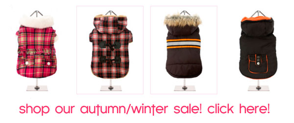sale dog clothes winer fall