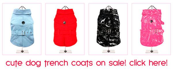 dog raincoats, trench coats