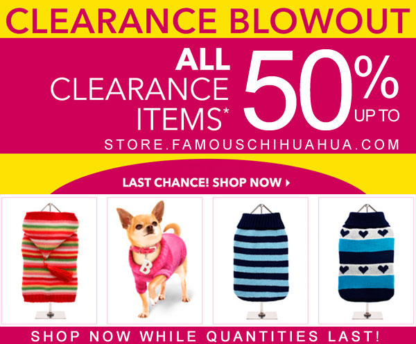 clearance blowout sale chihuahua dog clothes