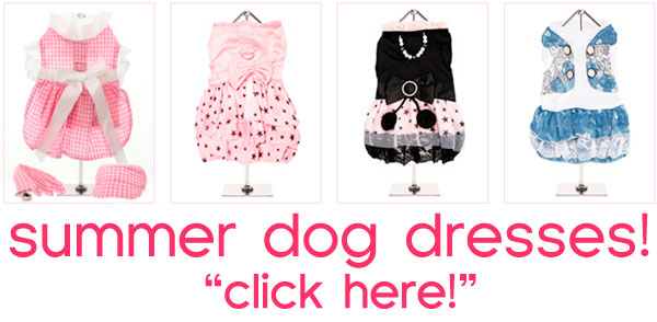 summer dog dresses