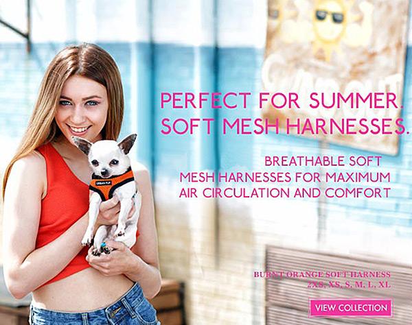 soft mesh dog harnesses