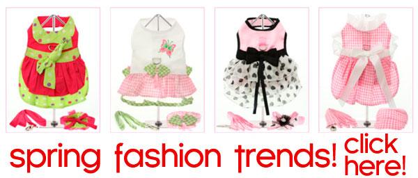 spring dog fashion trends