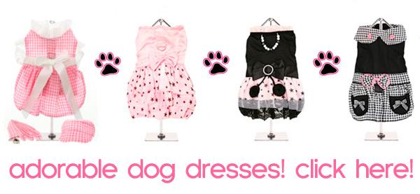 dog dresses for sale