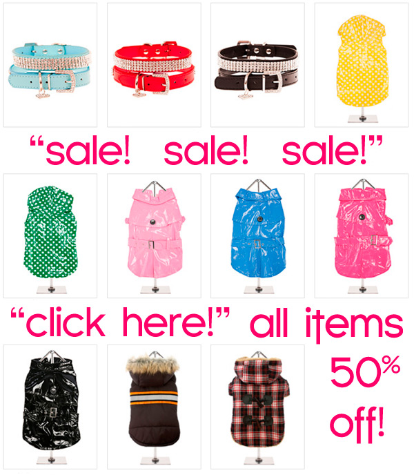 sale of chihuahua clothes! 50% off
