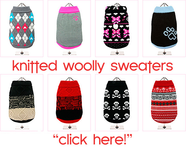 knitted woolly dog sweaters! click here!