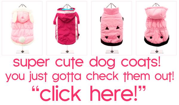 fall winter dog coats