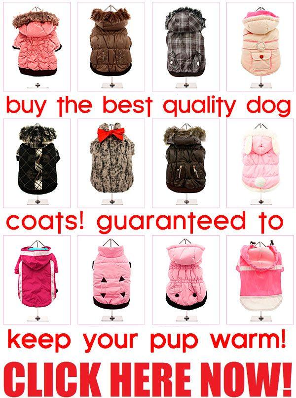 best quality dog coats