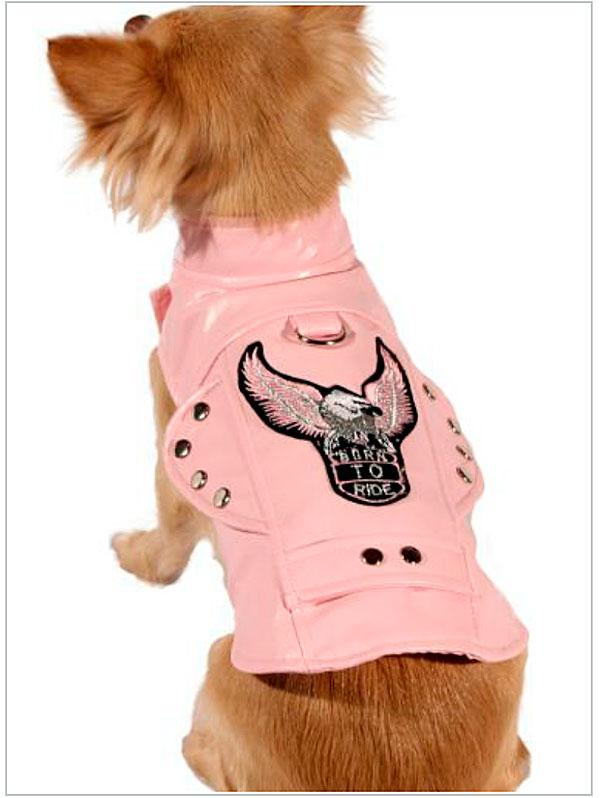 biker dog jacket