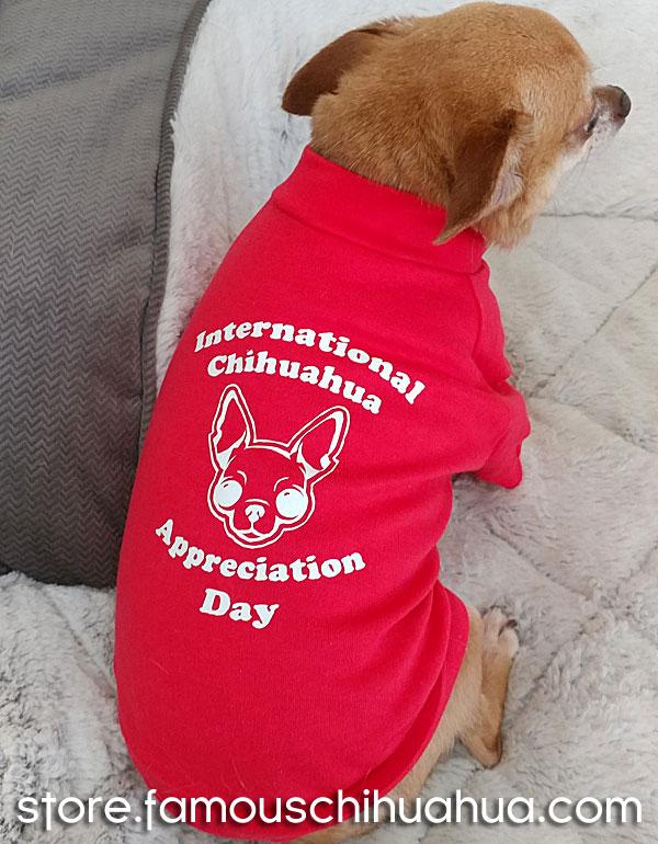international chihuahua appreciation day dog shirt