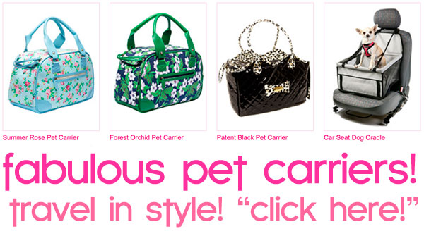 pet carriers for small dogs