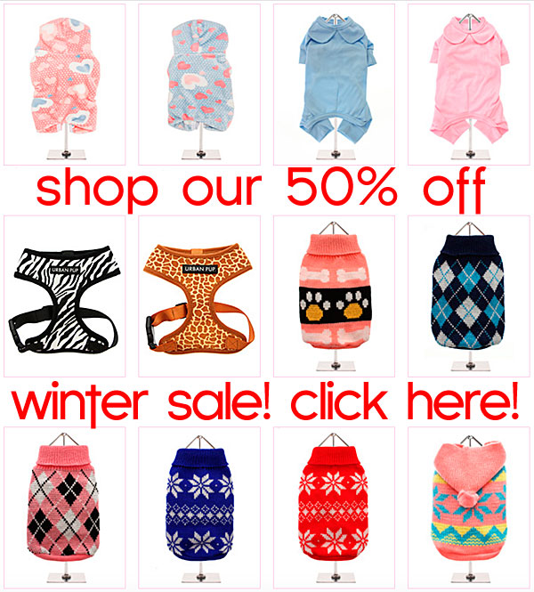 winter sale on chihuahua clothes and accessories
