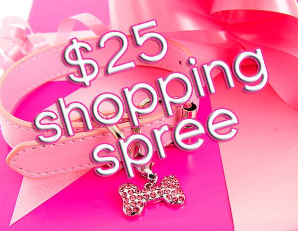 win a $25 dollar shopping spree for your chihuahua!